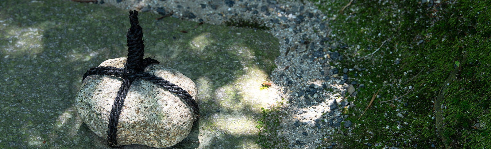 stopstoneinthegarden